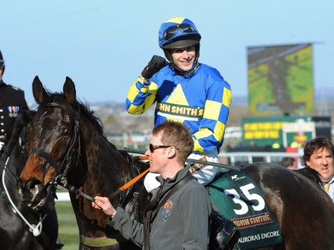 Grand National 2013: Debutant jockey Ryan Mania wins on 66/1 shot Auroras Encore