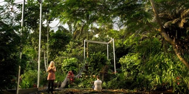 ENO's latest misfire is Sunken Garden, a 3D film opera composed and directed by Michel van der Aa (Picture: Joost Rietdijk)