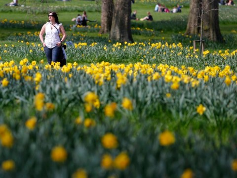 UK braced for hottest day of the year – but it won't last