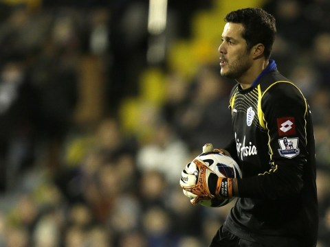 Harry Redknapp: Clubs must jump through Hoops to sign Julio Cesar