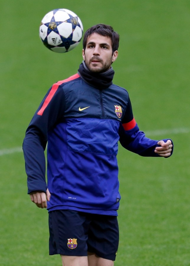 Barcelona's Cesc Fabregas watches a ball during a training session in Munich, southern Germany, on Monday, April 22, 2013. Bayern Munich will face FC Barcelona in a first leg Champions League semi final soccer match on Tuesday. (AP Photo/Matthias Schrader)