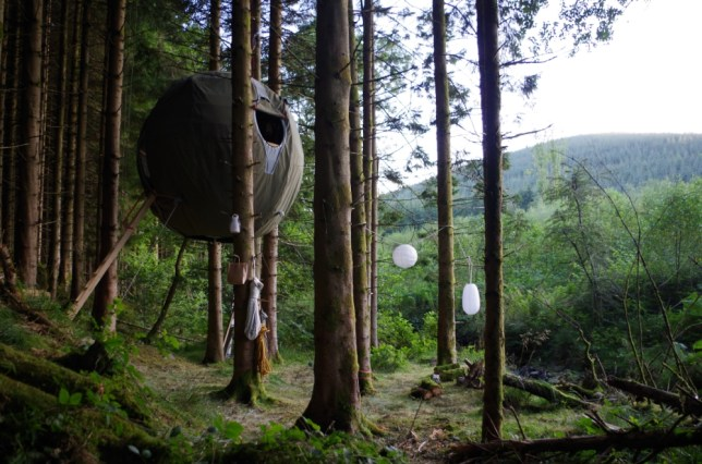 The tree tent allows guests a rare bird's-eye view of the forest (Picture: supplied)