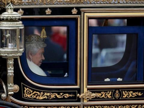 The Queen's Speech – A dog hater's charter