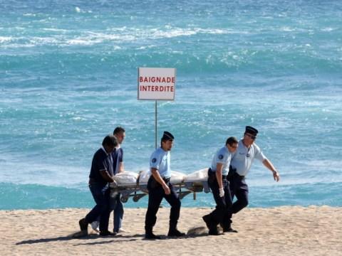 Honeymoon horror: Newlywed killed by shark as wife sunbathes on French island of Reunion
