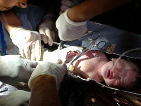 Former Chelsea striker Adrian Mutu wanted to adopt newborn baby found in sewage pipe