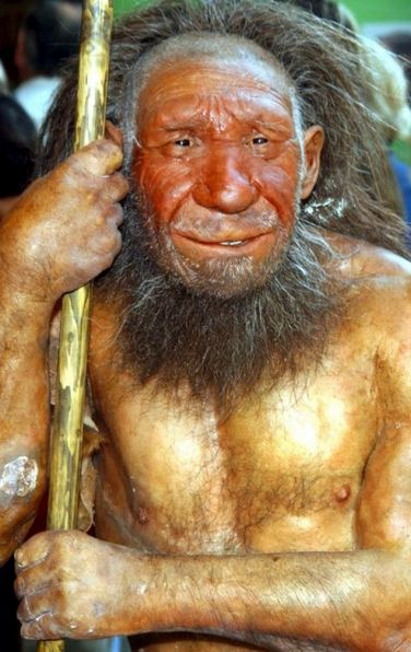 Neanderthals were right handed, new research finds