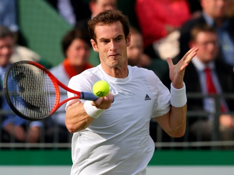 Andy Murray, Serena Williams, strawberries and cream: Top 10 Wimbledon bets