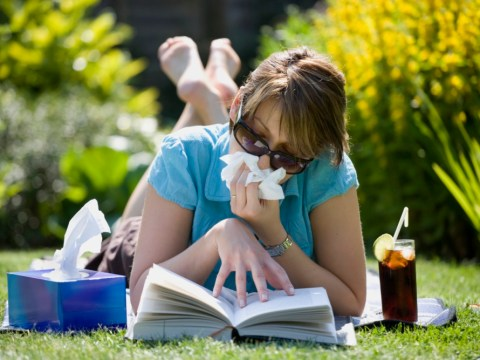 Hay fever this summer will be a toxic mix of fumes and blooms