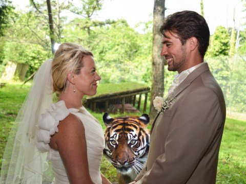 Tiger photobombs couple's official wedding photograph