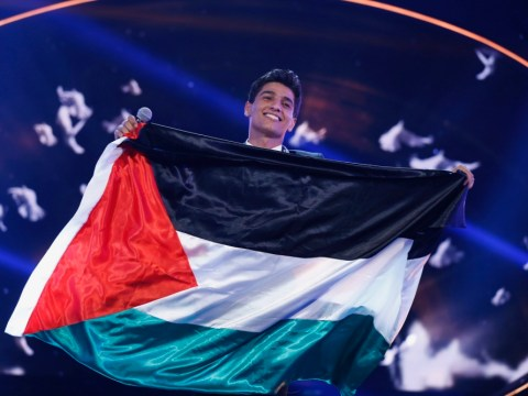 Arab Idol: Palestinian Mohammed Assaf's win prompts wild celebrations