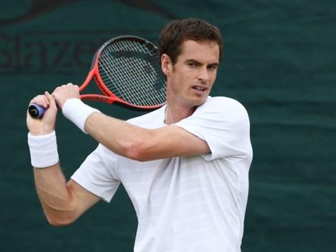Andy Murray fancies Serena Williams showdown on Wimbledon grass