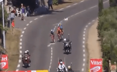 Tour de France 2013: Dog in road narrowly avoids causing huge crash on stage two