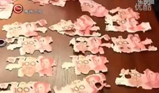 Termites, life savings, China