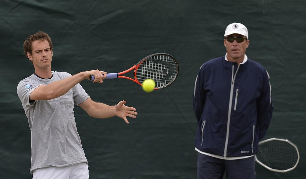 Wimbledon 2013: Andy Murray v Fernando Verdasco – the tale of the tape