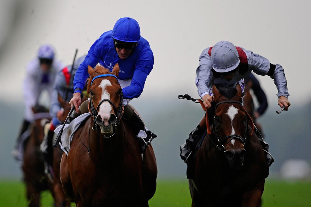 The Tipster: Dawn Approach can emerge triumphant when gun smoke clears in the Duel on the Downs