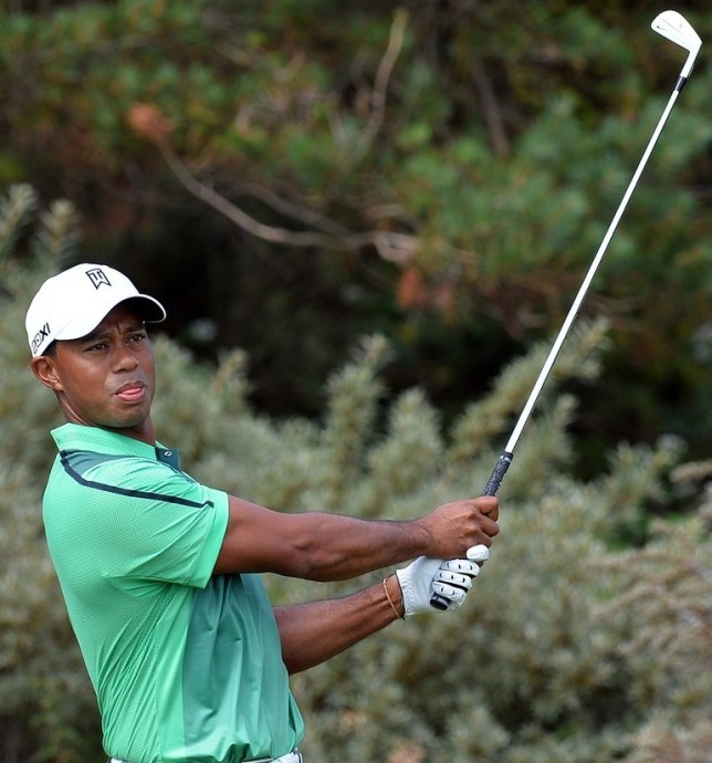 Green for go: Woods practices at Muirfield ahead of this week's Open (Getty)