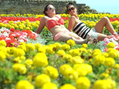5 things to complain about during The Great British Heatwave