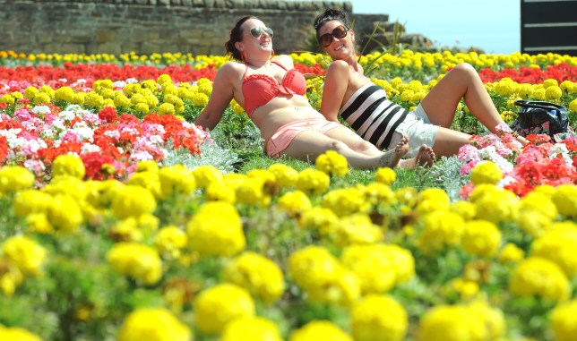 The UK is currently bathed in summer sun (Picture: PA Photo Owen Humphreys)