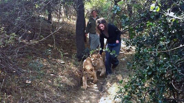 Lauren Fagen: Teen mauled by Moholoholo lion says it's a 'miracle' she survived