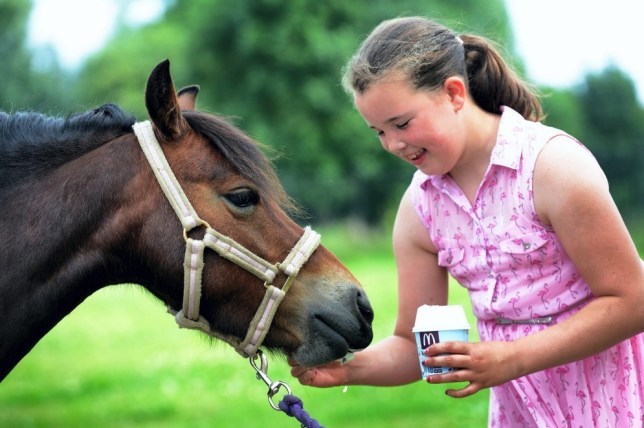 McDonald's pony mum: 'I've taken her for a McFlurry loads of times'