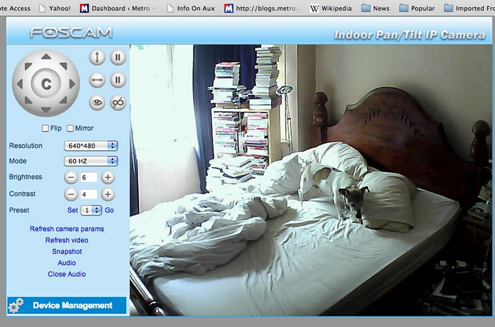 Big Brother for dogs – keeping a remote eye on your pet