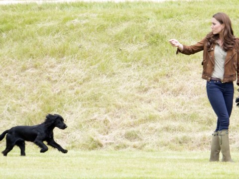 Kate Middleton and Prince William: Please don't forget about Lupo
