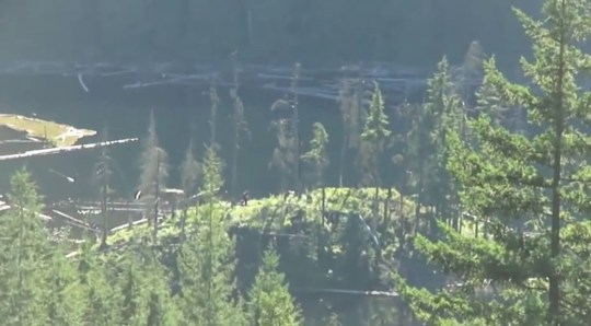 Video: Bigfoot spotted in mountains of Mission, British Columbia
