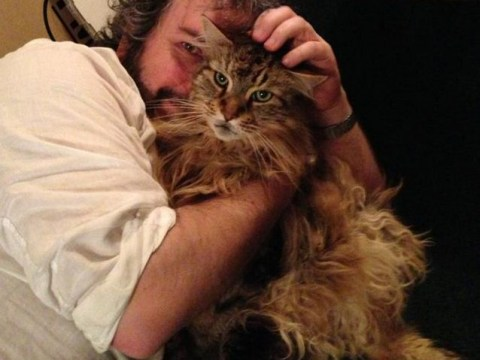 Peter Jackson cuddles up to cat after wrapping The Hobbit trilogy shoot