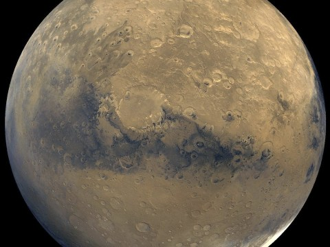Life on Earth 'may have begun on Mars'