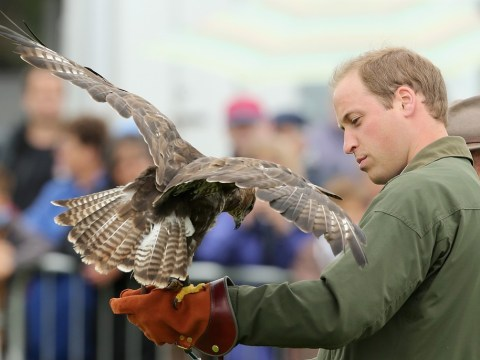 Prince William: I'm taking flight from Wales with new family