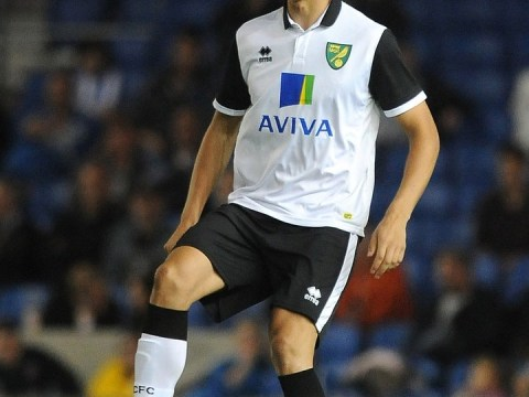 Luciano Becchio transfer to Middlesbrough makes sense for Norwich as squad overhaul could see Daniel Ayala leave too