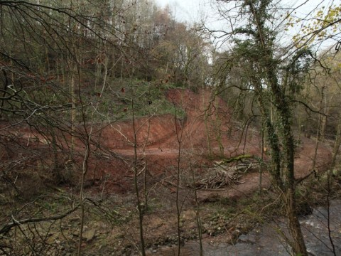 Empire strikes back: Wealthy retailer is punished for wrecking Hadrian's Wall wood