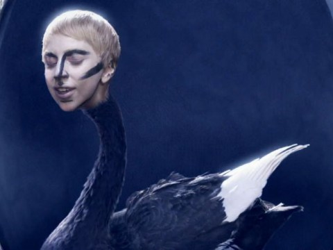 9 typically Lady Gaga things in new Applause music video