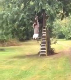 Dad builds homemade zipline to impress young son – what could go wrong?