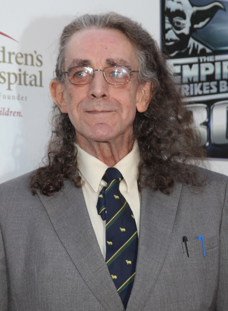 The Wookiee is back! Peter Mayhew 'to reprise role of Chewbacca' in Star Wars 7