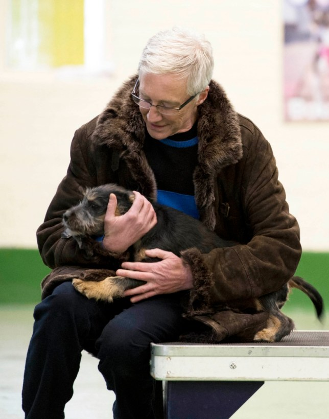 Television programme: FOR THE LOVE OF DOGS on ITV Embargoed for use until Tuesday 30th April From ITV STUDIOS  Thursday 9th May  Picture shows: Paul O'Grady with with Mongrel Buddy ITV s award-winning Paul O Grady: For The Love Of Dogs returns for a second series. Dog-lover Paul O Grady goes behind the scenes at the world famous Battersea Dogs & Cats Home.    Clint Images This picture is copyright Clint Images and can only be reproduced for editorial purposes directly in connection with the programme FOR THE LOVE OF DOGS or ITV. Once made available by the ITV Picture Desk, this photograph can be reproduced once only up until the Transmission date and no reproduction fee will be charged. Any subsequent usage may incur a fee. This photograph must not be syndicated to any other publication or website, or permanently archived, without the express written permission of ITV Picture Desk. Full Terms and conditions are available on the website www.itvpictures.com