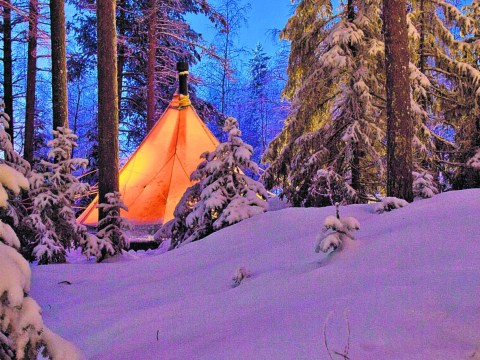 Head to Swedish Lapland and indulge in some Sami-style glamping