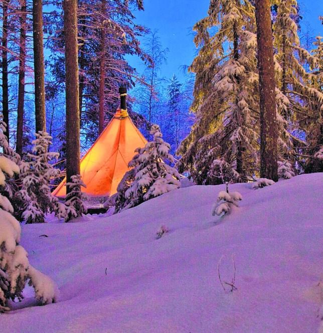 Sleep in a traditional fire-heated Sami lavvu deep in the Swedish  wilderness (Picture: Fredrik Broman)