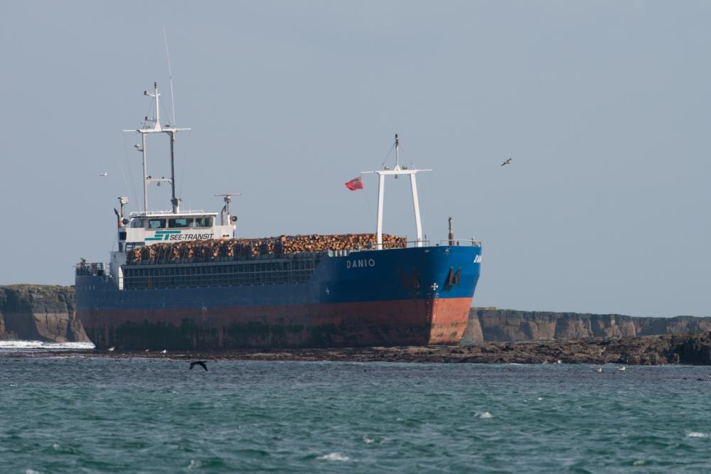 Collision: The MV Danio ran aground in the Farne Islands (Picture: Alan Hewitt)