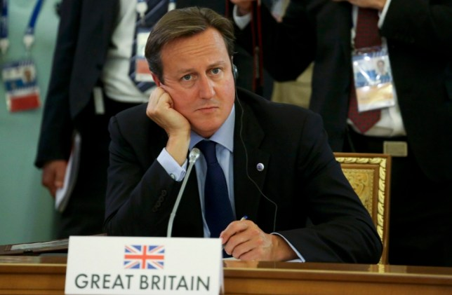 Britain's Prime Minister David Cameron attends the first working session of the G20 Summit in Constantine Palace in Strelna near St. Petersburg, September 5, 2013.          REUTERS/Sergei Karpukhin (RUSSIA  - Tags: POLITICS)