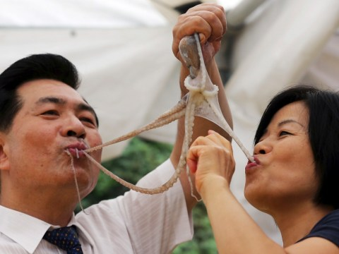 Festival-goers tuck into live octopus… despite risk of choking on wriggling legs