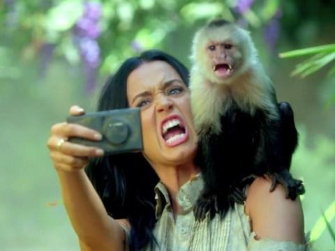 Katy Perry goes on selfie rampage in the jungle in Roar music video