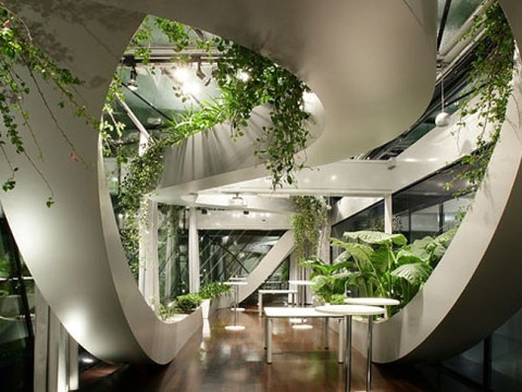 Workplaces with a difference: the offices embracing a healthy outlook