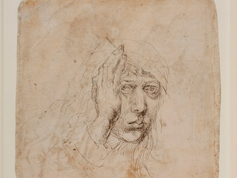 Albrecht Dürer at Courtauld: The early works of a genius