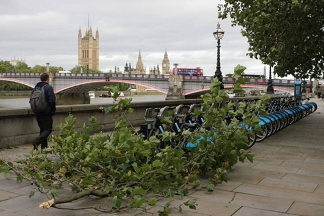 A fallen branch is seen as a man walks towards Lambeth Bridge on the River Thames as more than 40,000 homes are without power and commuters are facing severe travel disruption after the worst storm in years lashed the UK. PRESS ASSOCIATION Photo. Picture date: Monday October 28, 2013. See PA story WEATHER Storm. Photo credit should read: James Edgar/PA Wire