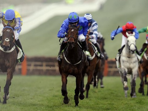 Cheltenham favourite Hurricane Fly blows hot and cold to set new record