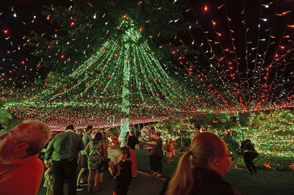 Fluorescent fantasist reclaims Christmas lights record with 502,165 bulbs