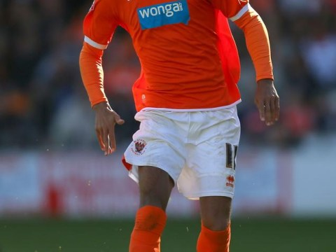 Newcastle ready to fend off rivals to sign Blackpool winger Tom Ince and take Wilfried Zaha on loan from Manchester United