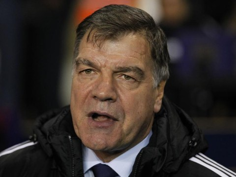 West Ham boss Sam Allardyce 'earning more than Spain coach Del Bosque'