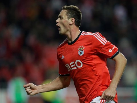 Nemanja Matic lined up for January move to Manchester City from Benfica